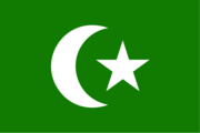 Flag of the Arab nation