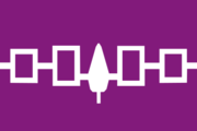 Flag of the Iroquois nation